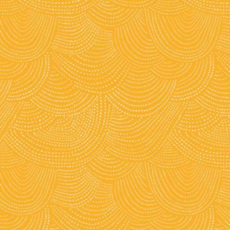 Citrus Scallop Dot
