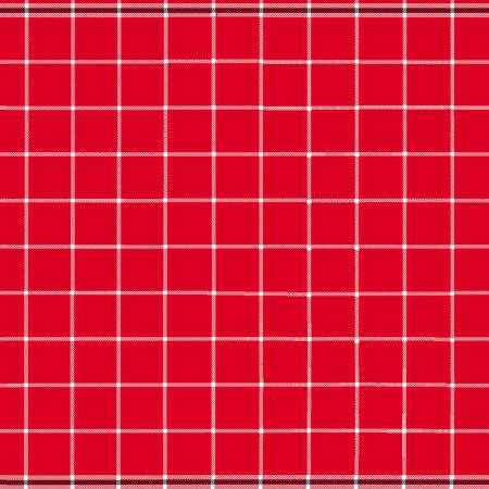 Red Border Stripe 20x27in Towel