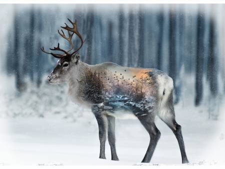 Call of the Wild Caribou 32in x 43in