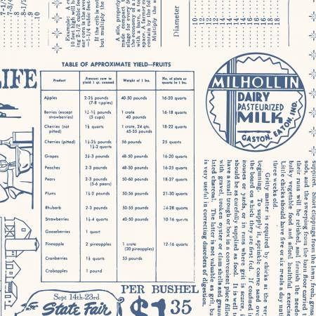 Farm Girl Vintage WB7887 Denim 108
