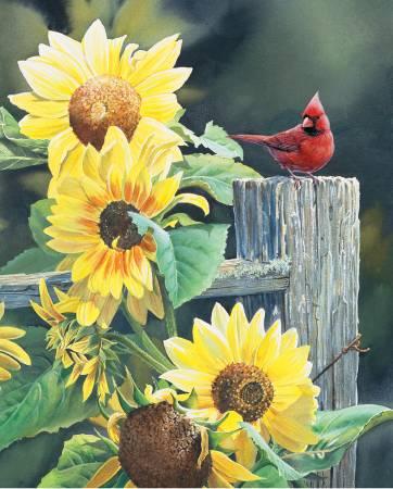 Cardinal & Sunflowers 36in Panel
