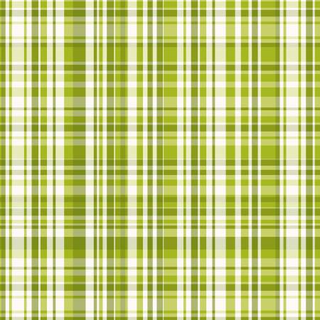 Poppy Garden - Olive Plaid