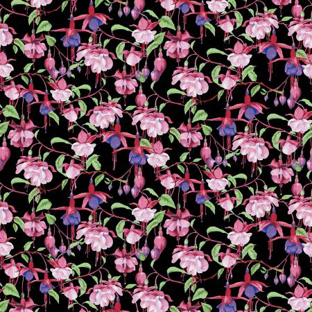 Clothworks Fuchsias and Hummingbirds Black Fuchsias & Hummingbirds Y2355-03