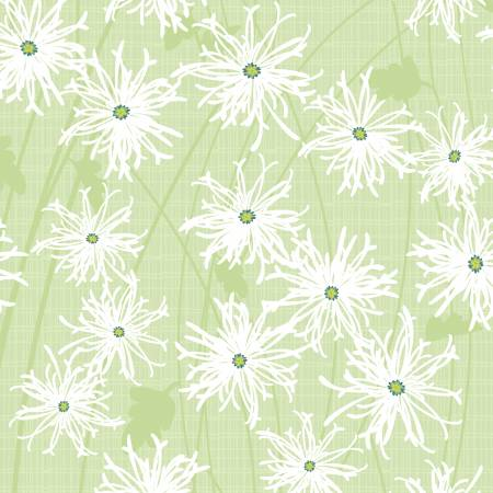 Sunday Afternoon Daisies Olive