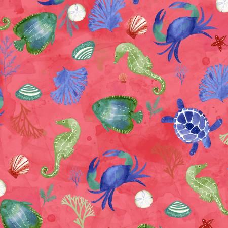 Raspberry Sealife