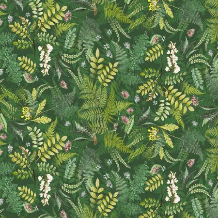 Botanical Journal Digital Forest Fern