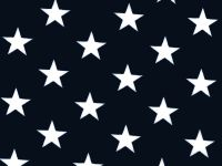 108 Inch Quilt backing blue star