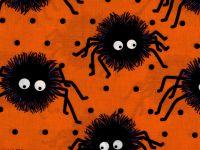 Black/Orange Spiders