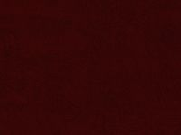 108 Inch Wide Backing - Deep Red Paisley