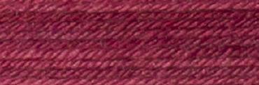 Yuri 5027 Red Coleus