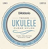 D'Addario EJ65TLGPro-Arte Custom Extruded Nylon Ukulele Strings, Tenor Low-G
