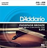 D'addario Mandolin light loop end strin