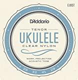 D'Addario EJ65T Pro-Arte Custom Extruded Nylon Ukulele Strings, Tenor