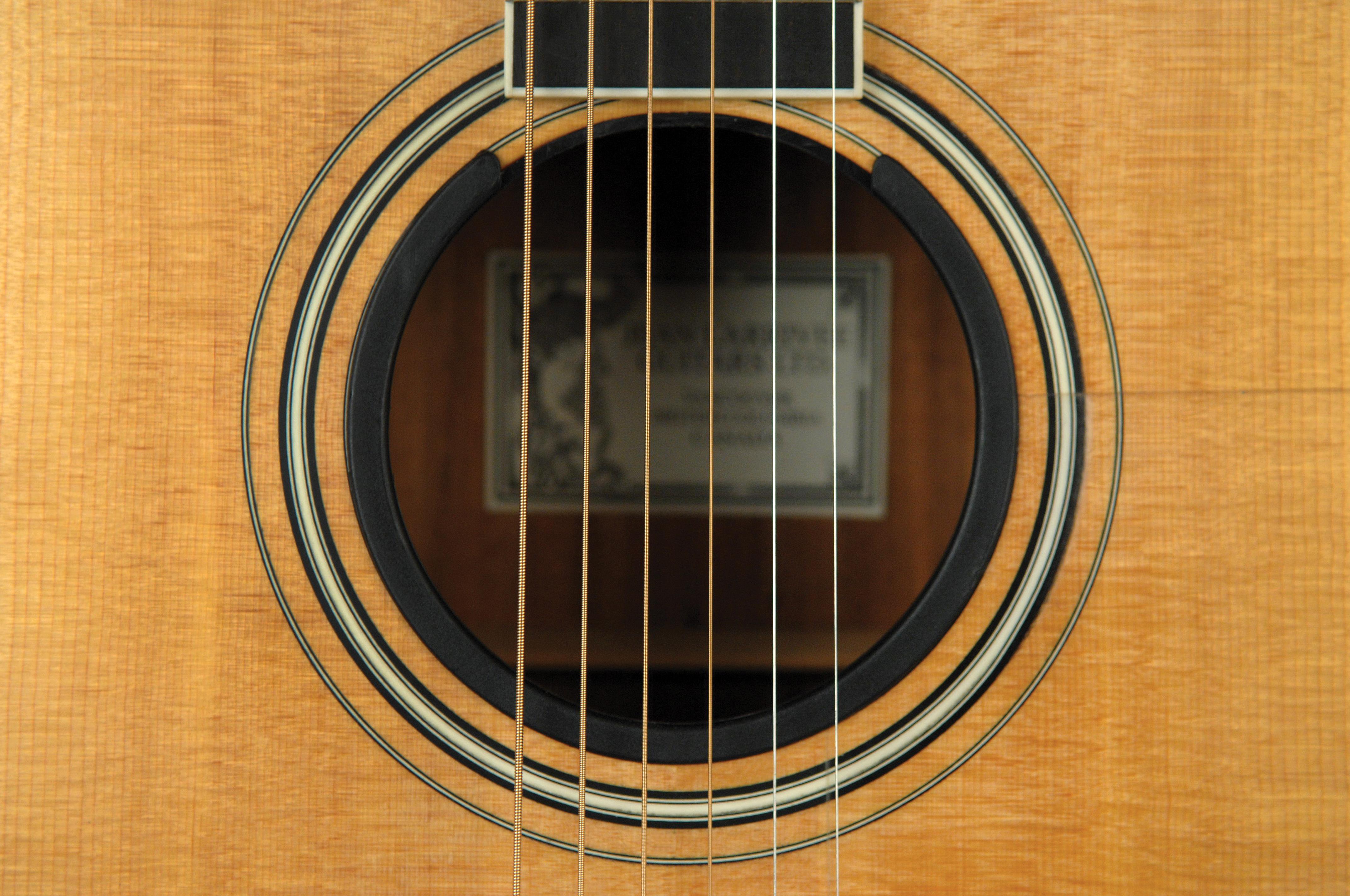D'addario Acoustic Sound Enhancer