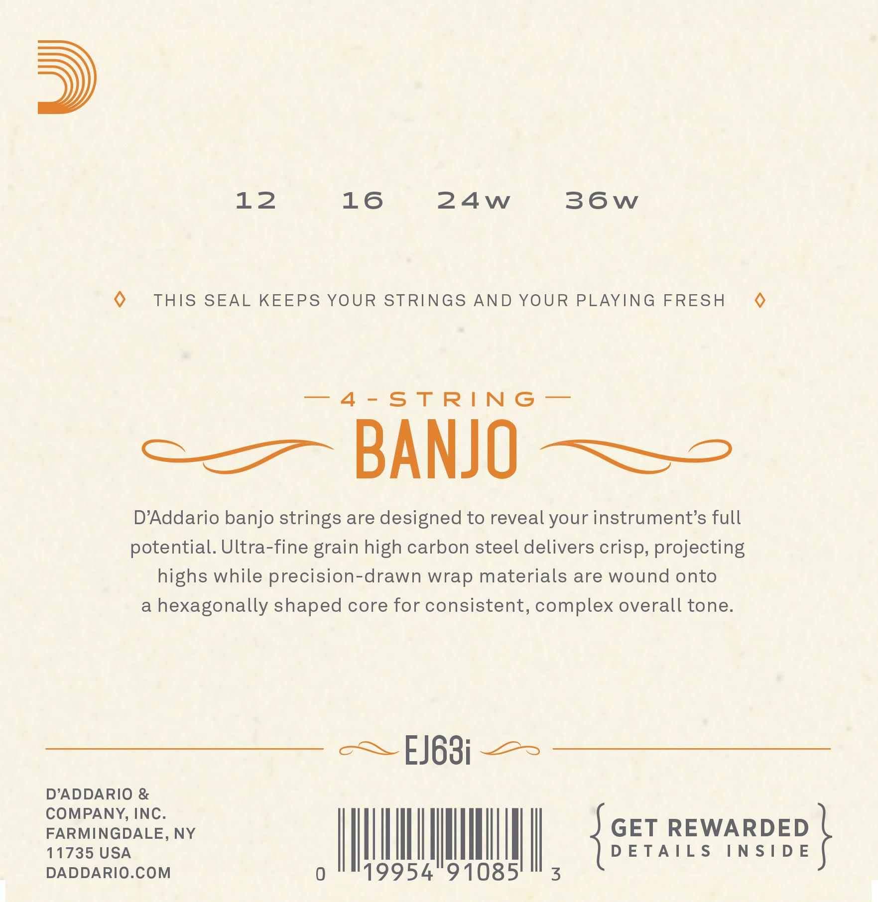 D'Addario EJ63i Irish Tenor Banjo Stringset