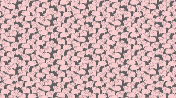 Piggies (Charcoal)
