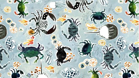 Crabs (Multi)