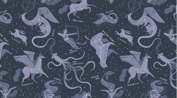 DS-Constellations