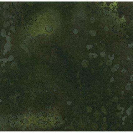 Fossil Fern Deepest Moss