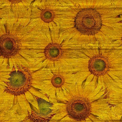 Sunflowers Gold (The Land I Love)