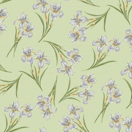 Magnificent Blooms 16783-40