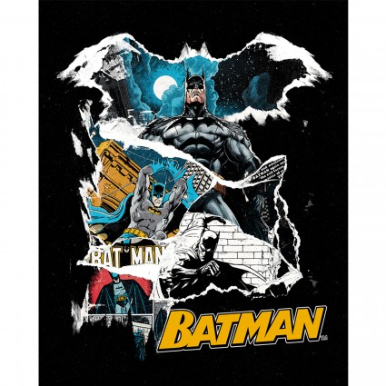 Batman Panel 36x42