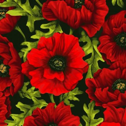 Poppy Poetry Y2658-82