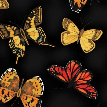 Poppy Poetry Y2659-3
