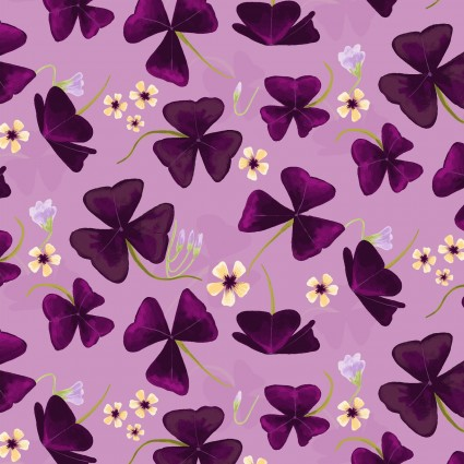 Amethyst Garden Orchid Flowers