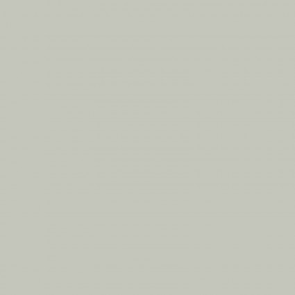 CW-6110 D Anti-pill  Fleece Solid - Gray (20K)