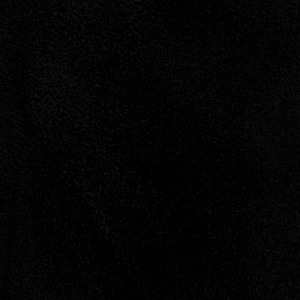BLACK  ALPINE FLEECE