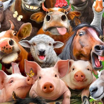 Farm Selfies
