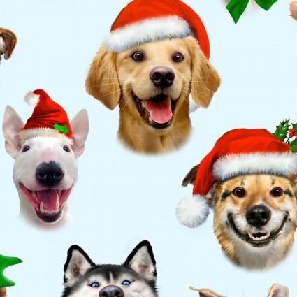 Christmas Selfies 1324 Blue Dogs