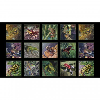 Amazing Frogs Panel - Black