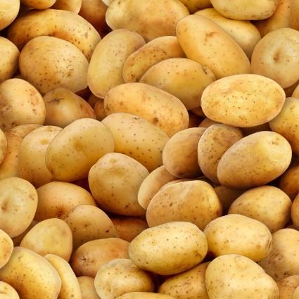 Potatoes<br/>Elizabeth's Studio 575-GOL