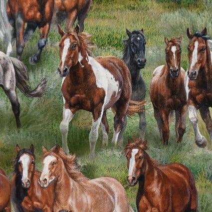 Wild & Free Horses 9901-GRE