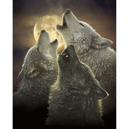 Past & Present Wolf Panel Moon