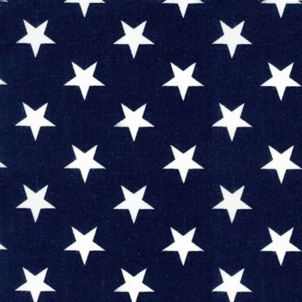 Patriotic 108 Quilt Backs
