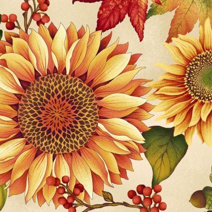 Autumn Album HEG2018-44
