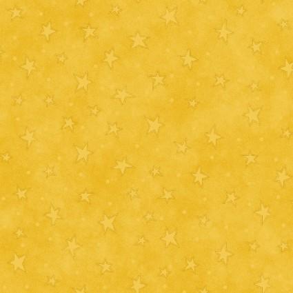 Starry Basics 8294 34