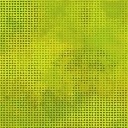 Dit Dot Evolution 1DDE 24 - Evergreen