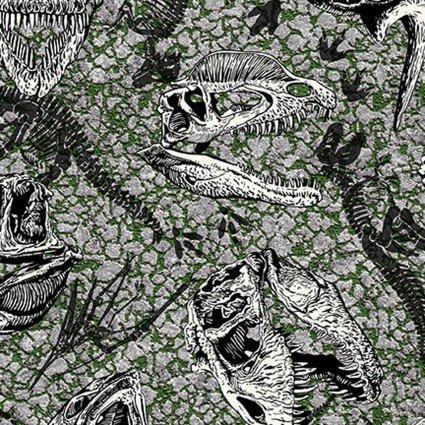 Jurassic Park Dinosaur Fossils