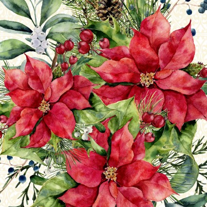 A Poinsettia Winter White Background