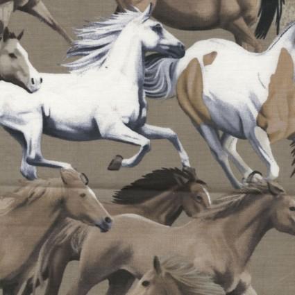 Wild Wild West 08023 79