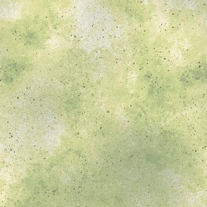 Kanvas New Hue Celery