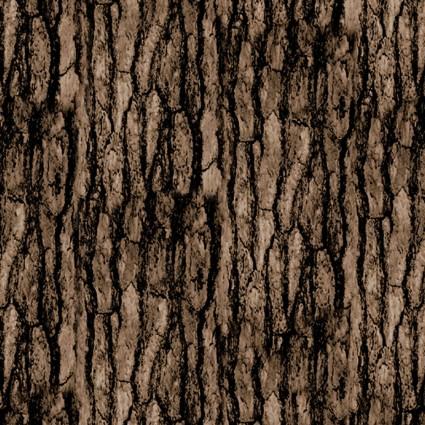 Nature Walk - Texture Pine Cone
