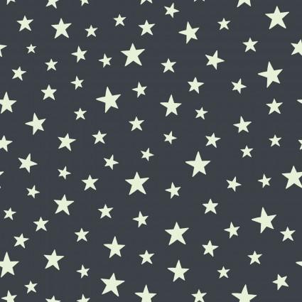 Christmas Glow- C48-3 Black Stars Glow in the dark