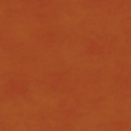 Orange Spice Shadow Play