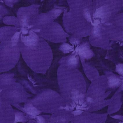 Catalina Ultra Violet