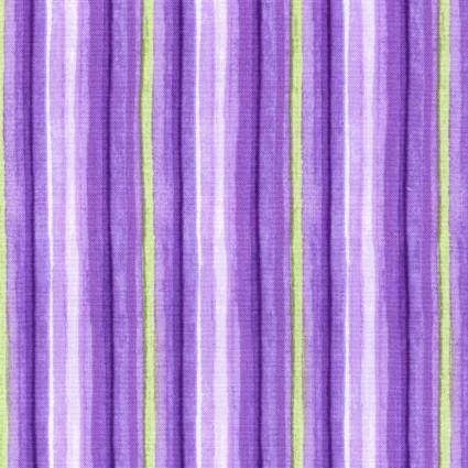 *Catalina Ultra Violet